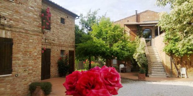 Lush green landscape and gardens at Il Greppo